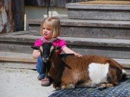 Kinderspaß mit Tieren auf Gut Aiderbichl