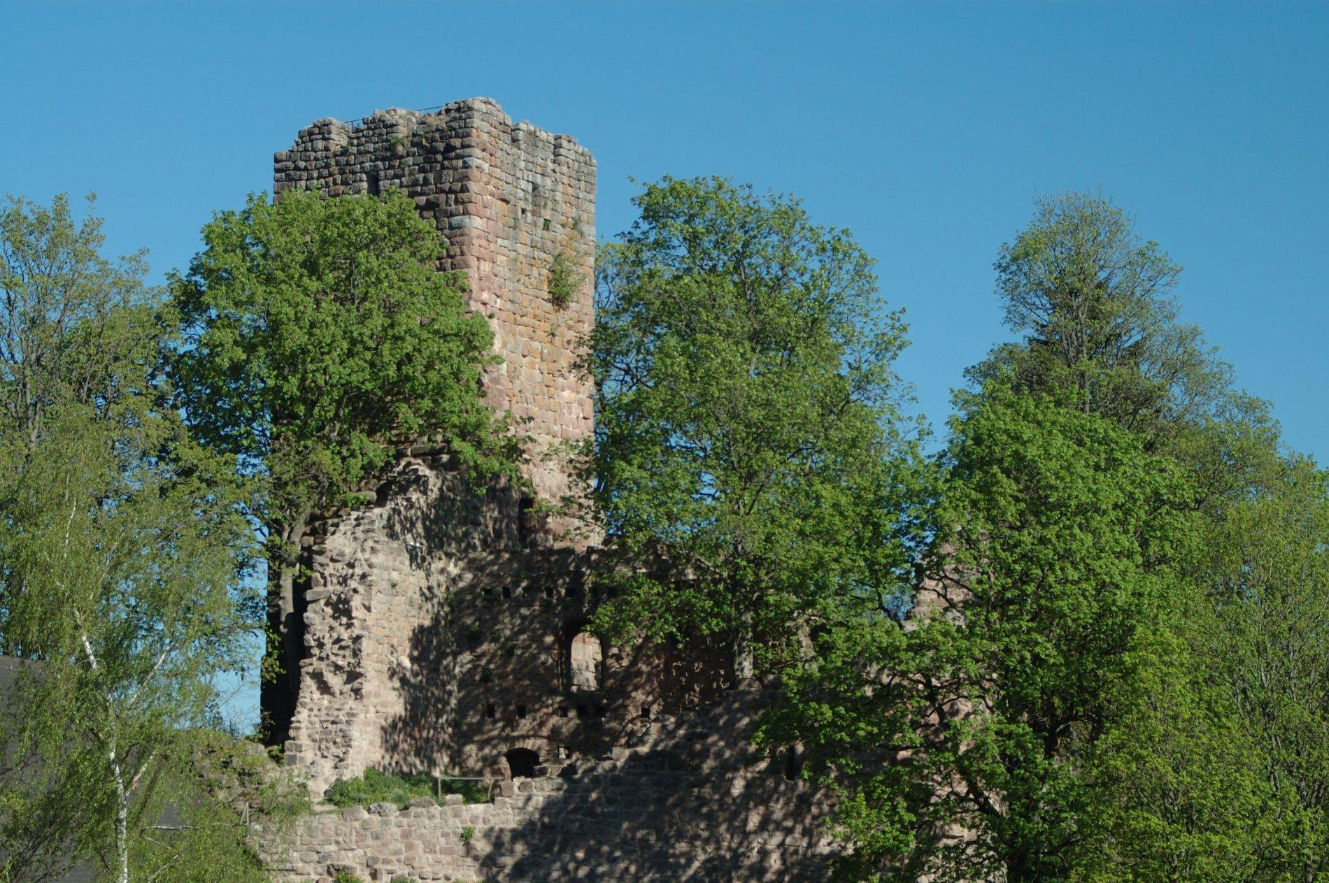 Ruine Waldau mit Schwarzwaldhaus
