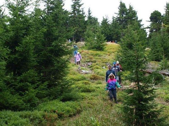 Wanderung am Gipfelwanderweg