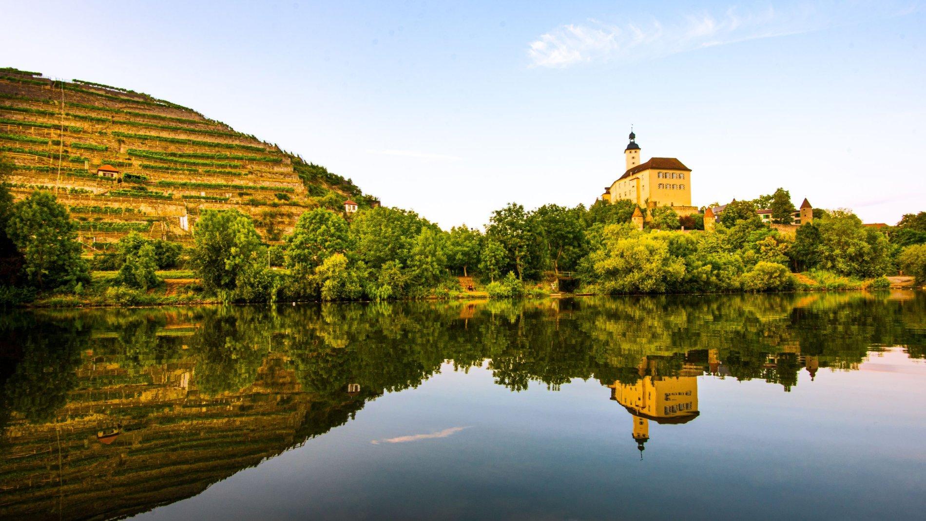 Blick auf das Schloss und den Neckar