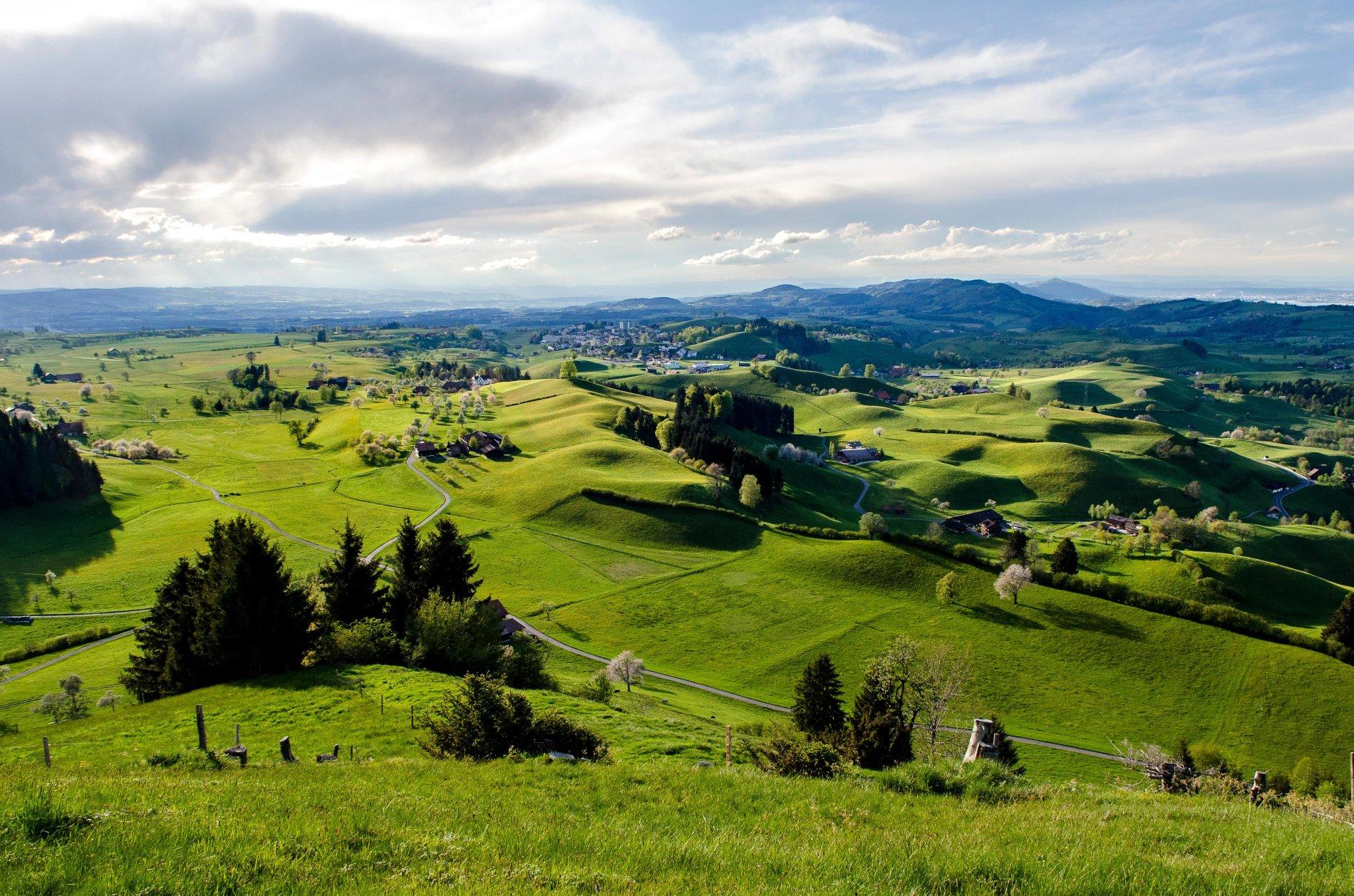 Moränelandschaft von Menzingen