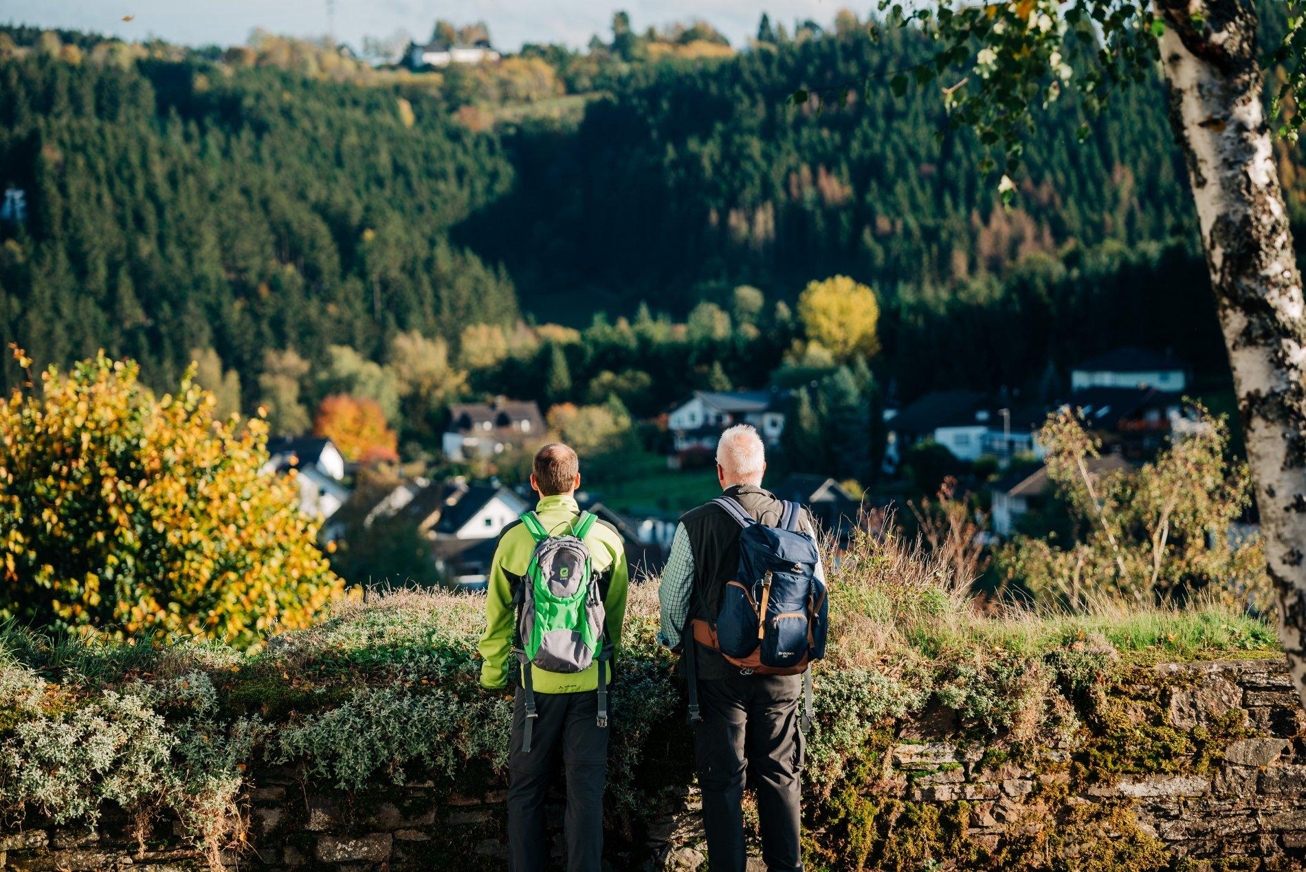 Panoramablick von Burgruine Reifferscheid