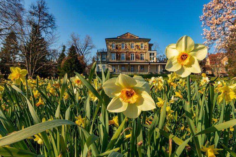 Villa Prym in Konstanz