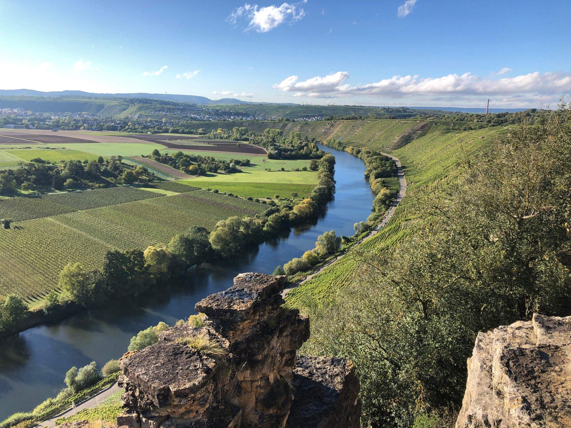 Hessigheimer Felsengärten: Blick auf den Neckar