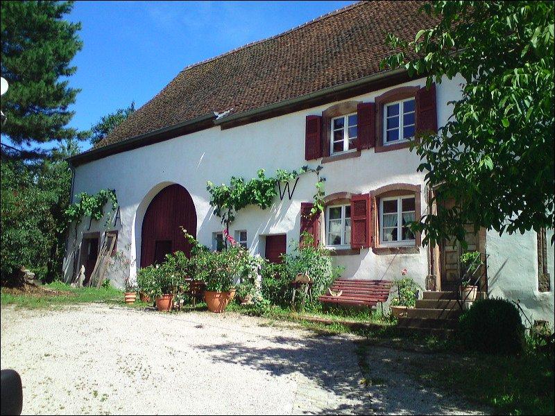 Altes Bauernhaus mit begrüntem Hof