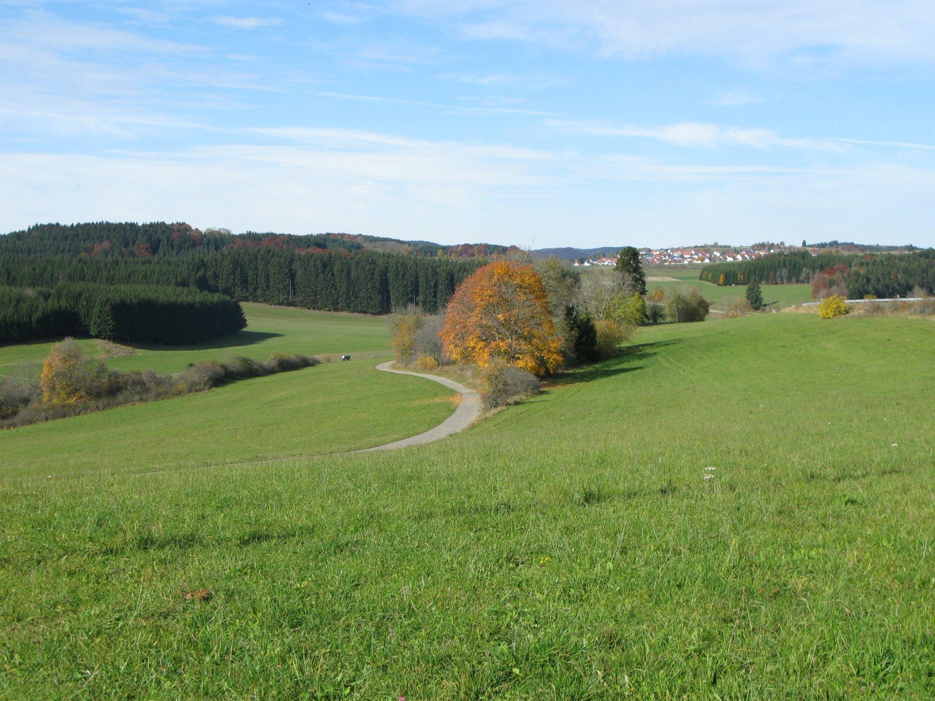 Blick über grüne Wiesen bei Heinstetten