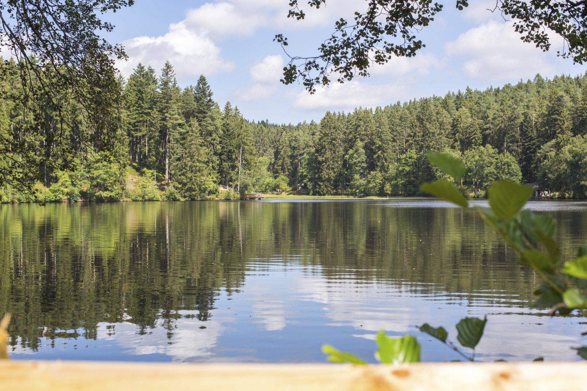 Nordseite Schlüchtsee