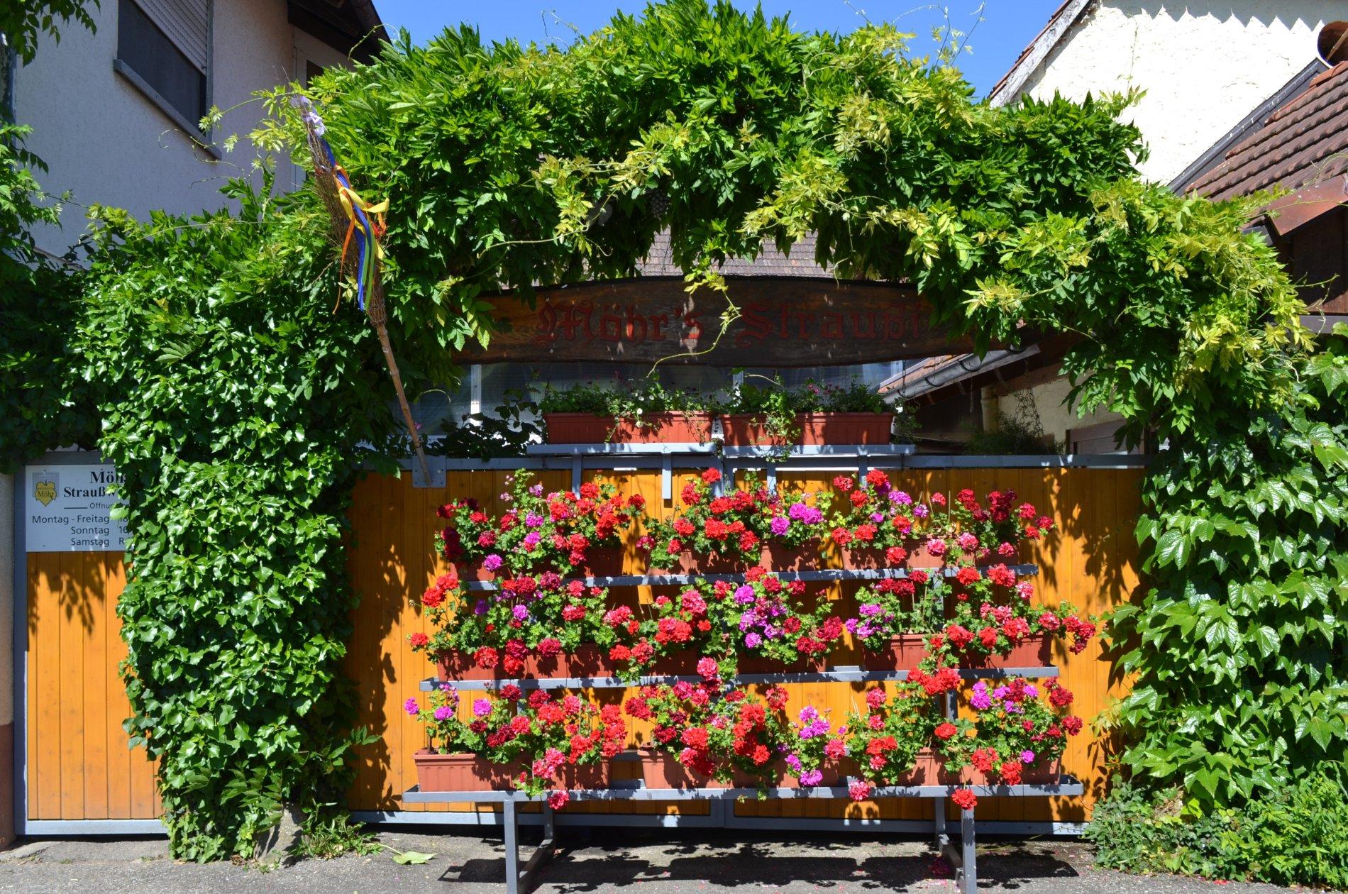 Hofeingang von Möhr's Straußwirtschaft