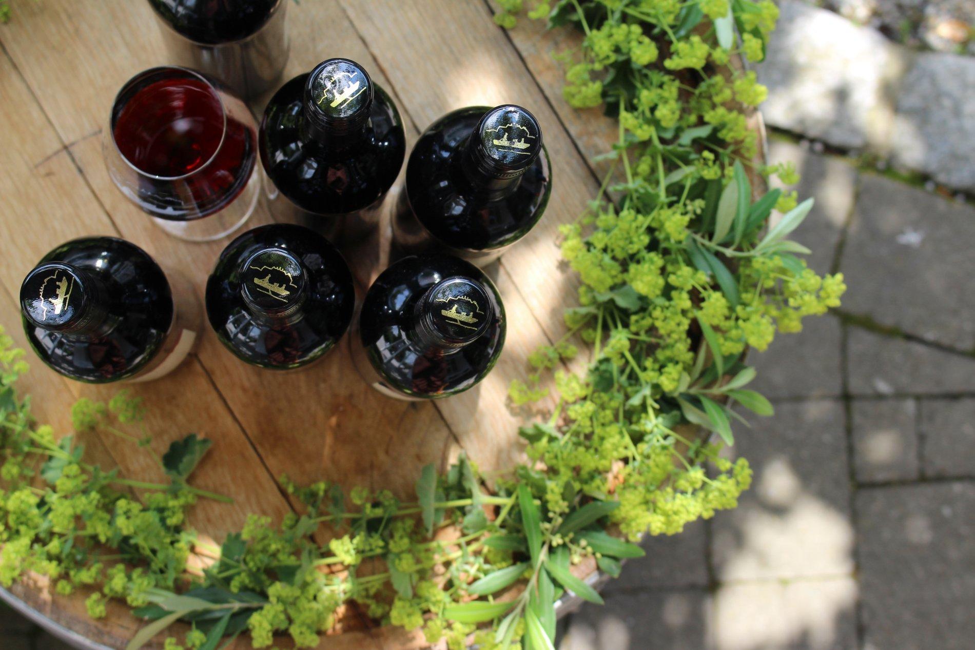 Terrasse mit Tischen und Blick auf Weinreben und den Bodensee