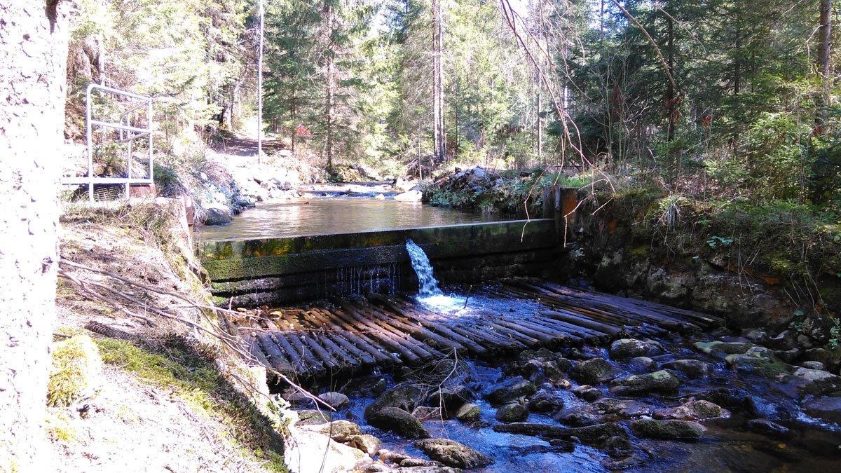 Kleines Wehr am Triftsteig im Lamer Winkel/Bayerischer Wald.