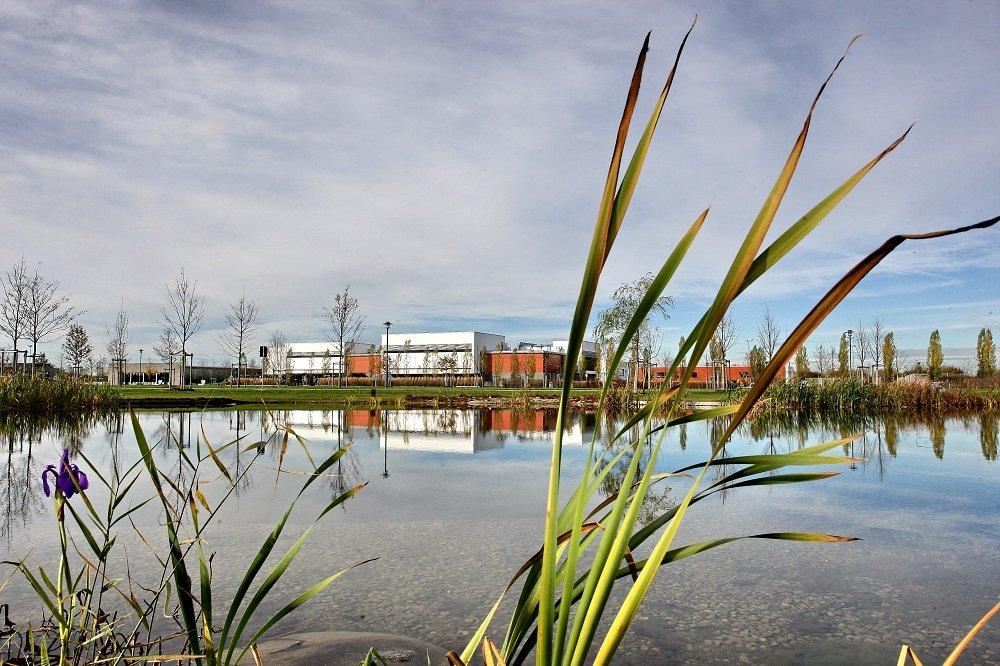 Blick vom Weiher auf die Sporthäuser des Sport- und Freizeitparks Hallbergmoos