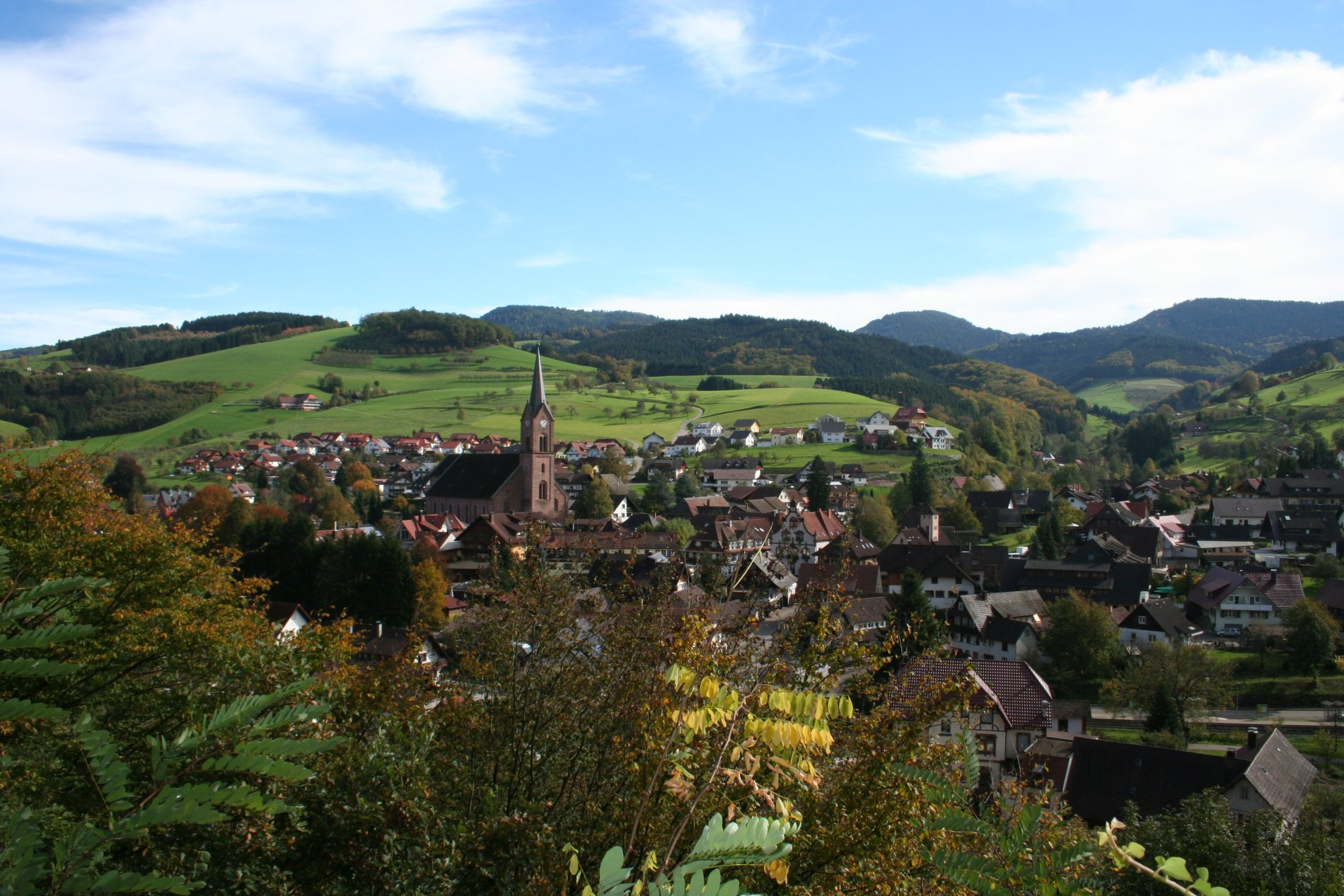 Blick auf Oberharmersbach vom Pavillion