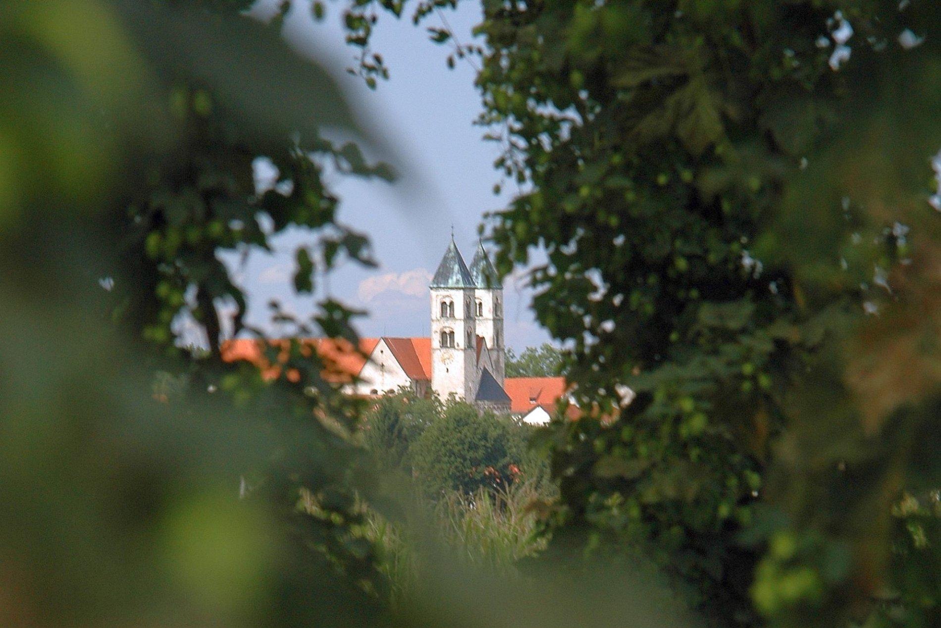 Blick zur Klosterkirche Biburg