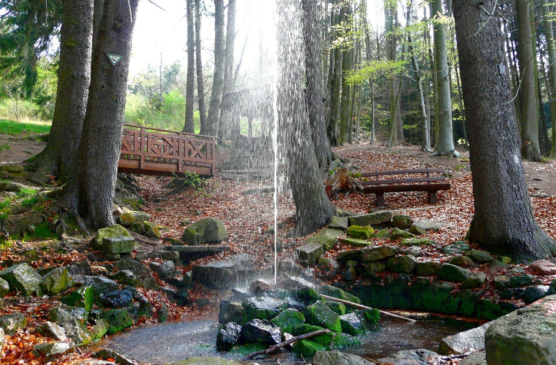 Kalter Brunnen Hammelbach