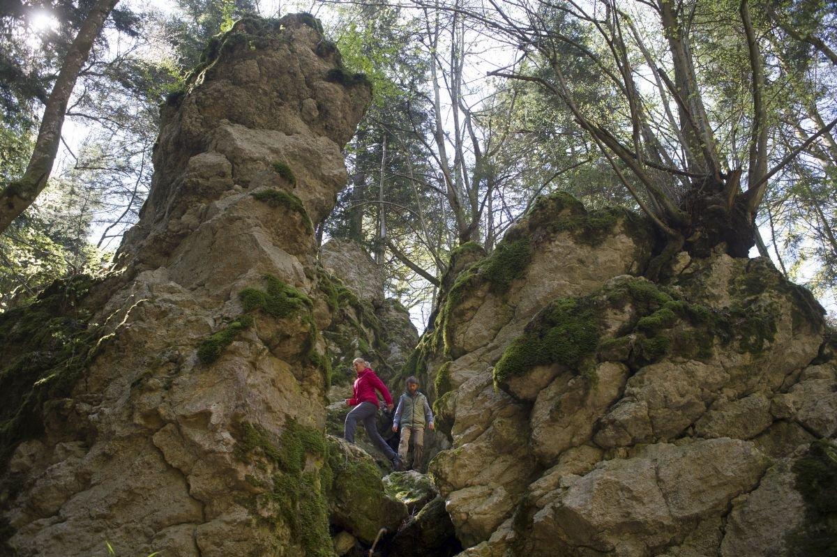 Das Felsenmeer, Namensgeber des Traufgangs Felsenmeersteig