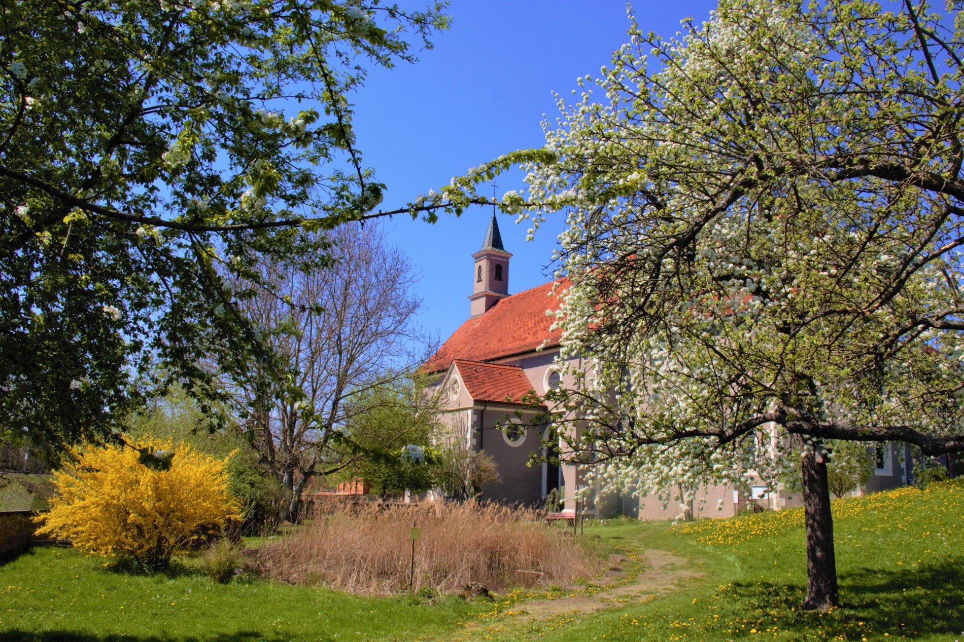 Blick auf St. Luzen vom Klostergarten aus