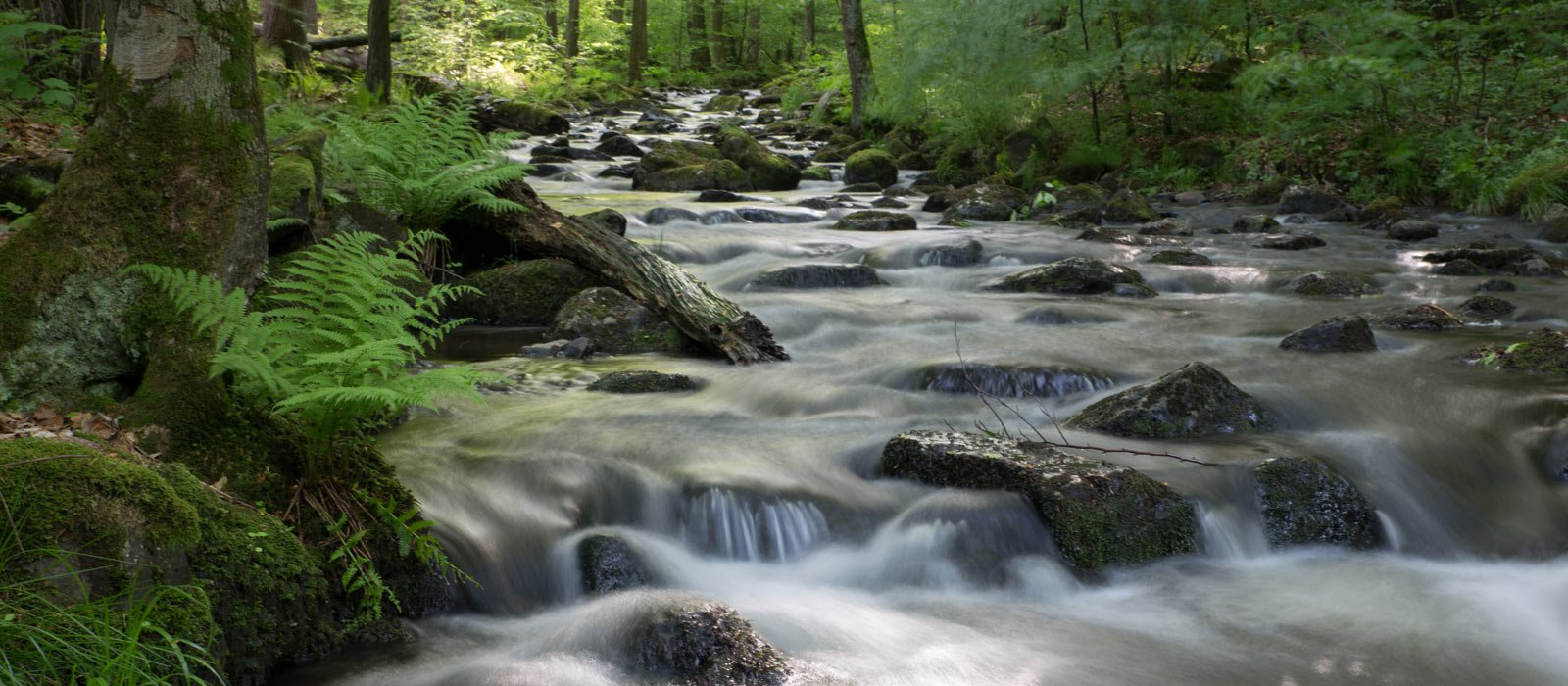 Fluss am Vulkanring Vogelsberg