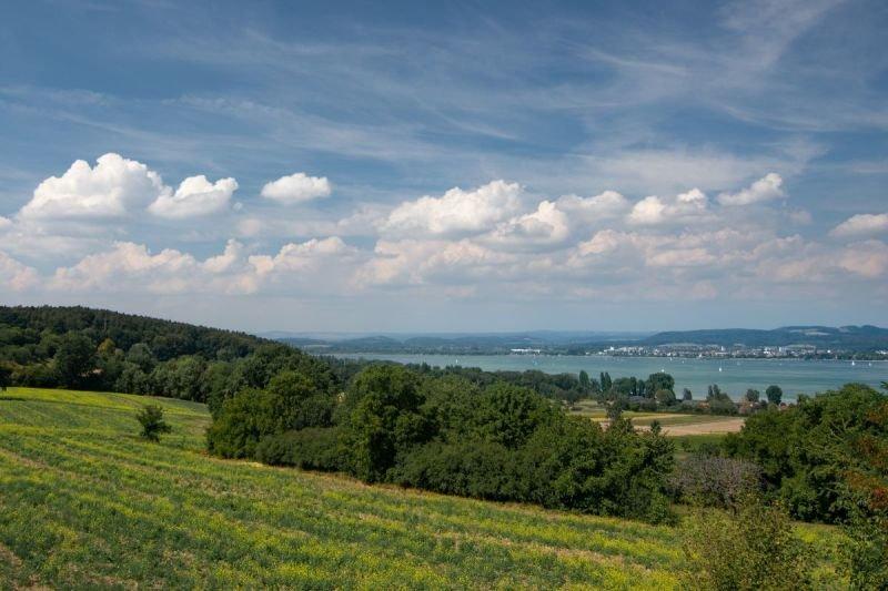 Kursschiff Arenenberg auf dem Untersee