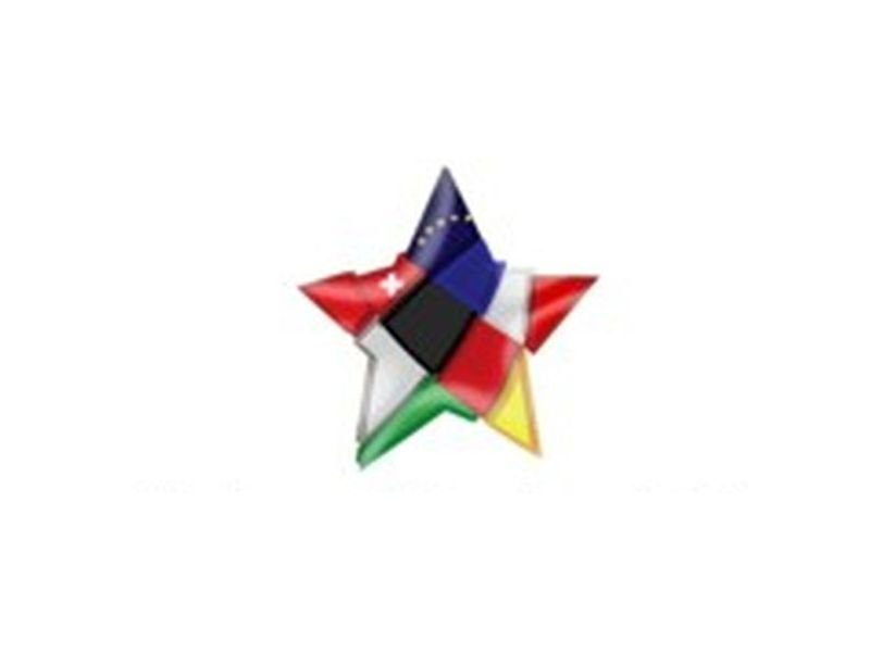 Logo Verein europäischer Freundschaft Gaienhofen e.V.