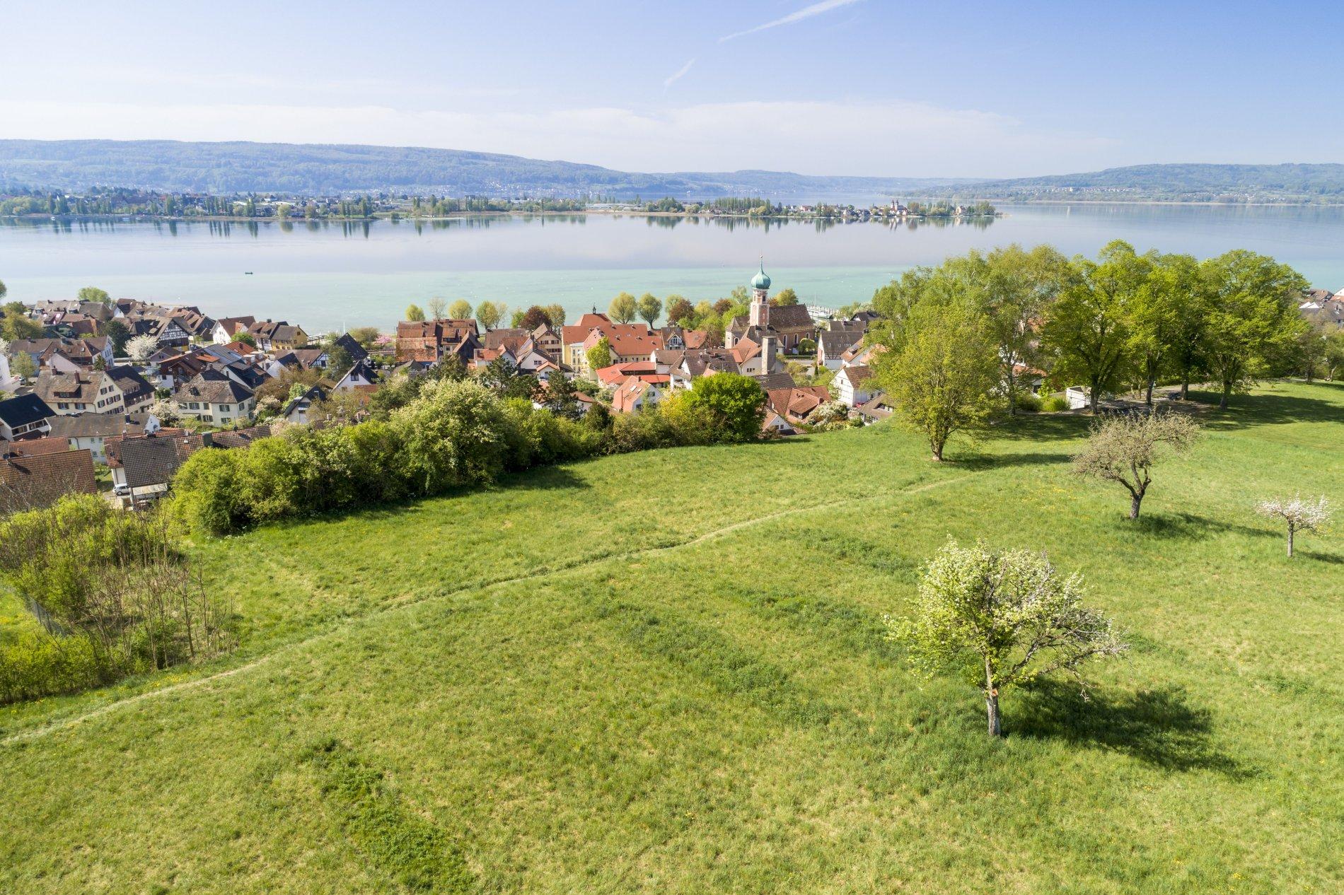 Allensbach-Blick vom Hoehrenberg