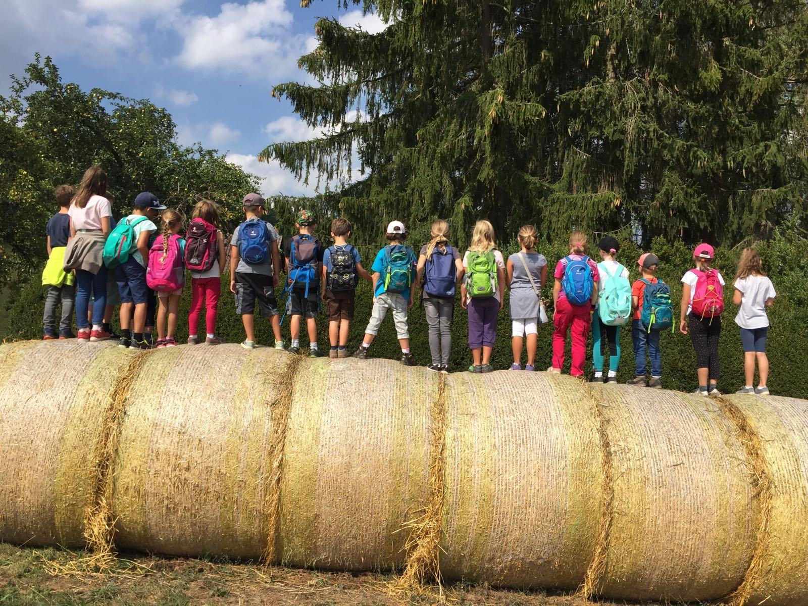 Sommerferienprogramm des Calwer Stadtjugendreferats
