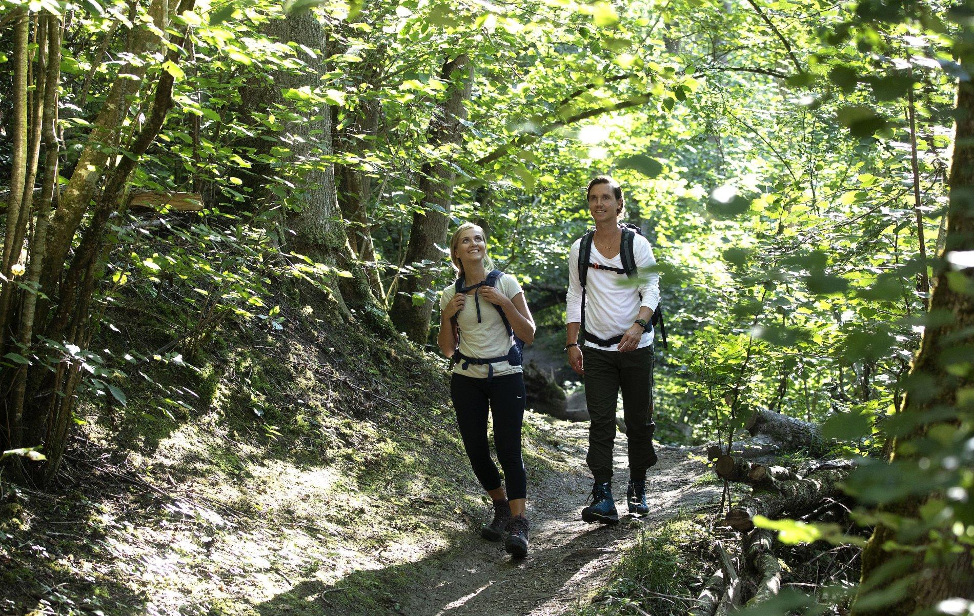 Wandern in der Klingebachschlucht