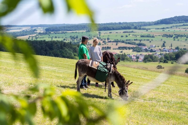 Eselwanderung Biosphärenreservat Bliesgau