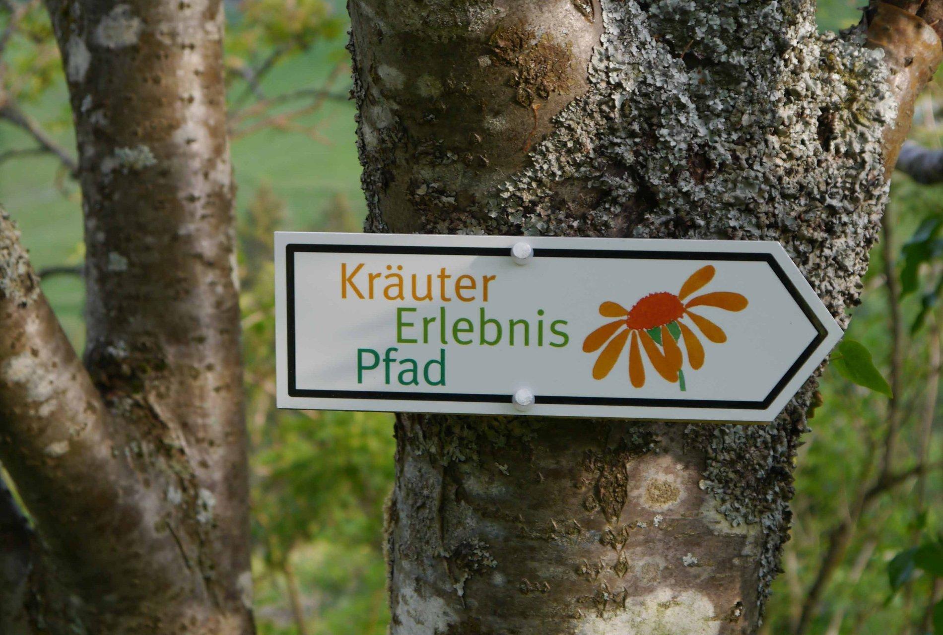 Schild zum Kräuter-Erlebnispfad in Oberried-Hofsgrund