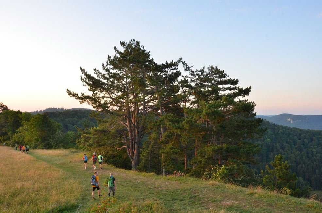 Albstadt Challenge