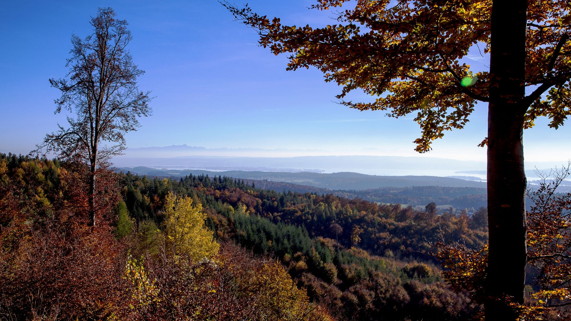 Herbst auf dem Bodanrück