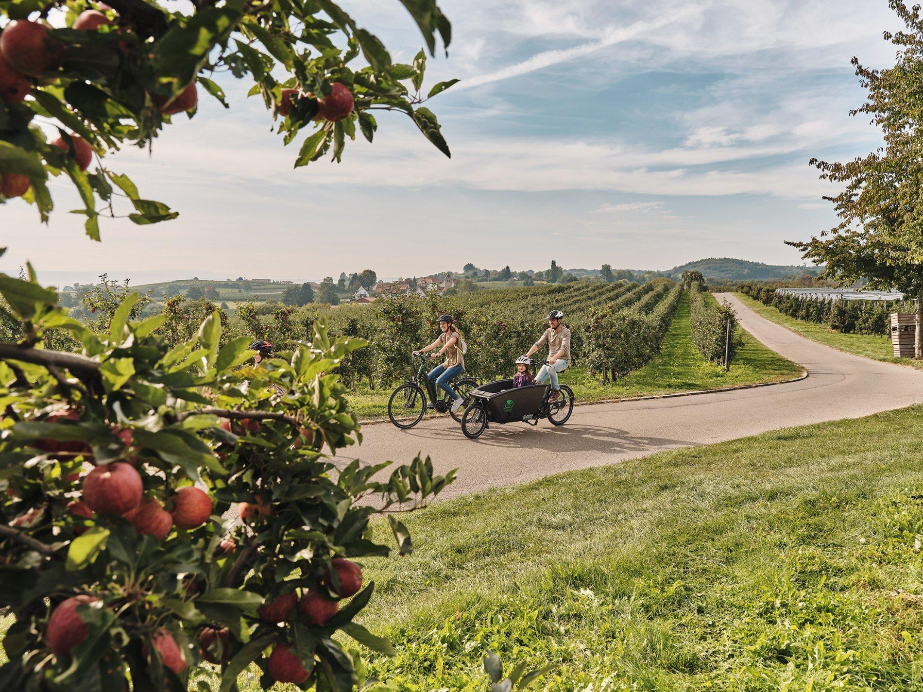Familie fährt Rad am Hohberg im Herbst