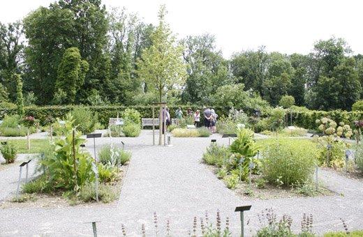 Kräutergarten beim Kloster Roggenburg