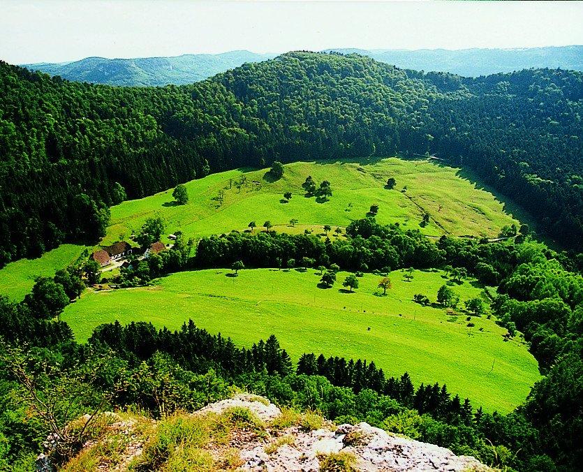 Blick auf grüne Wiesen und bewaldete Hügel ins Wannental
