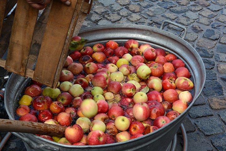 Äpfel werden in einer Zinkwanne gewaschen
