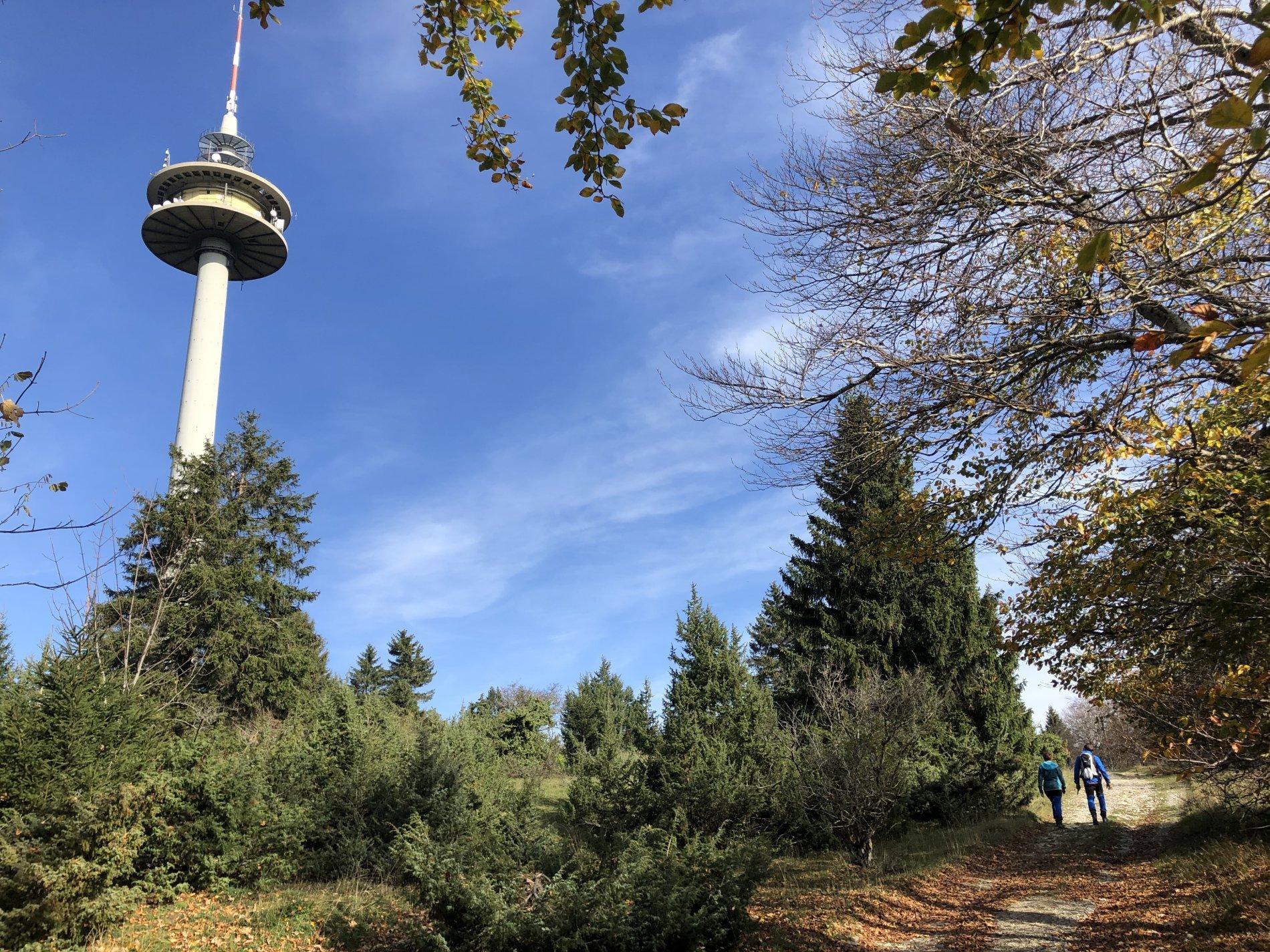 Herbst auf dem Plettenberg