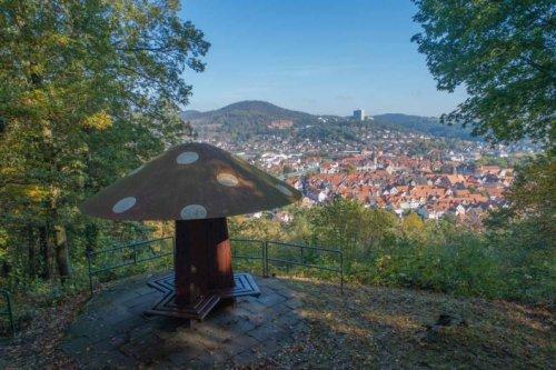 Blick auf Rotenburg an der Fulda vom Pilzchen