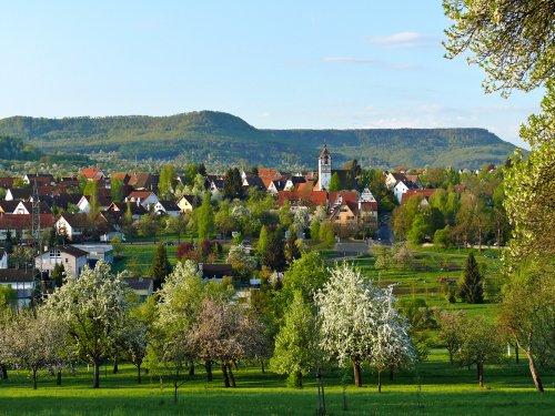 Eine Ortschaft zwischen blühenden Bäumen.