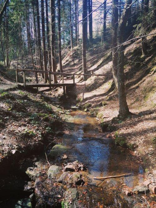 Bachlauf in der Lochbachklamm