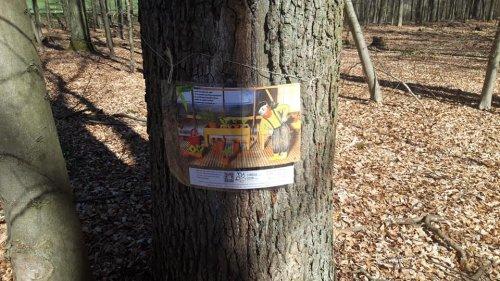 Neue Geschichtenausdrucke am Baum  im Schützenwald