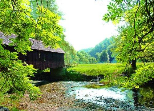 Naturschutzgebiet Neckarburg