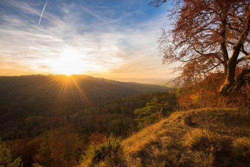 Herbstliche Stimmung auf dem Heiligenkopf
