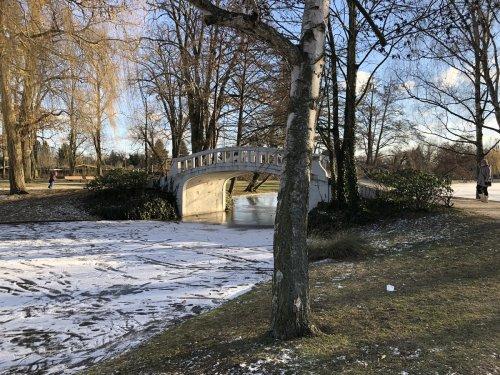 Winter im Höchster Stadtpark