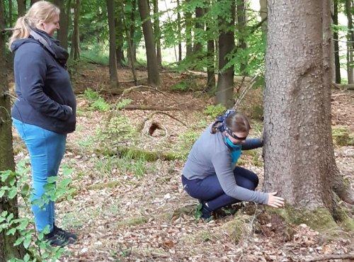 Mit Baum auf Tuchfühlung gehen
