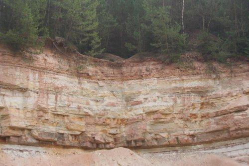 Geostation Saurierfährte bei Steinbruch Nähe Heller Platz