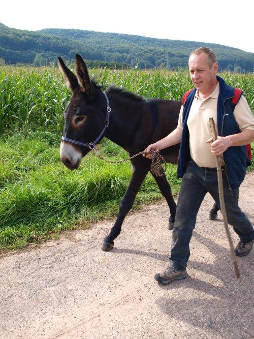 Uwe wandert mit seinem Esel am Dreienberg