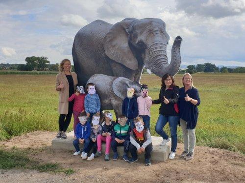 Kindergruppe vor einem Elefanten bei der Aktion