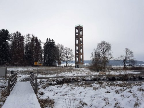 Der Bannwaldturm, eingebettet in die winterliche Riedlandschaft.