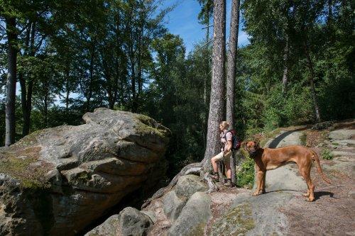 entspannte Pause auf dem Riesenstein