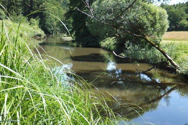 Idylle am Fluss Chamb bei Furth im Wald