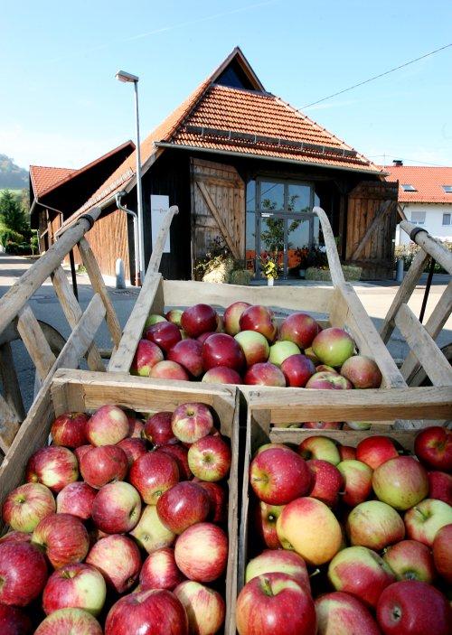 Obstbaumuseum in Metzingen-Glems